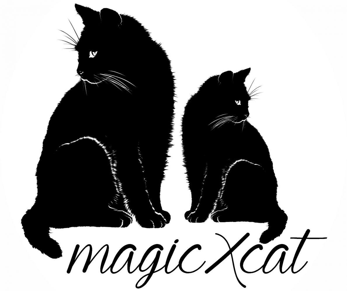 magicxcat – magical * spellcasting * divination * fortune telling